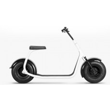 SEEV-800 Electric Scooter
